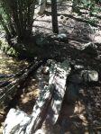tesuque creek crossing