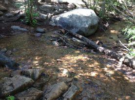 tesuque creek stream crossing
