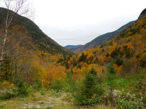Crawford's Notch