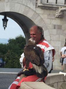 Hawk handler by St. Matthias