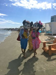 Don't tell Disney: Mouse-eared entrepreneurs in Mamaia